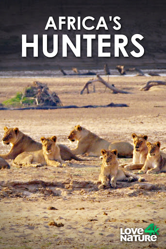 Watch Movie africa-s-hunters-season-2