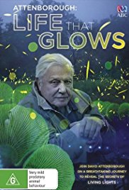Watch Movie attenborough-s-life-that-glows