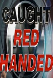 Watch Movie caught-red-handed-season-8