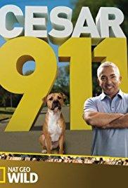 Watch Movie cesar-911-season-1