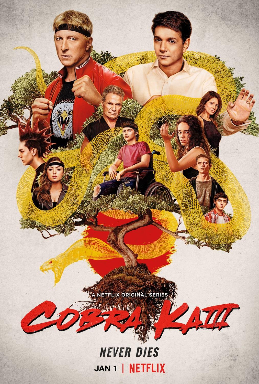 Watch Movie cobra-kai-season-3