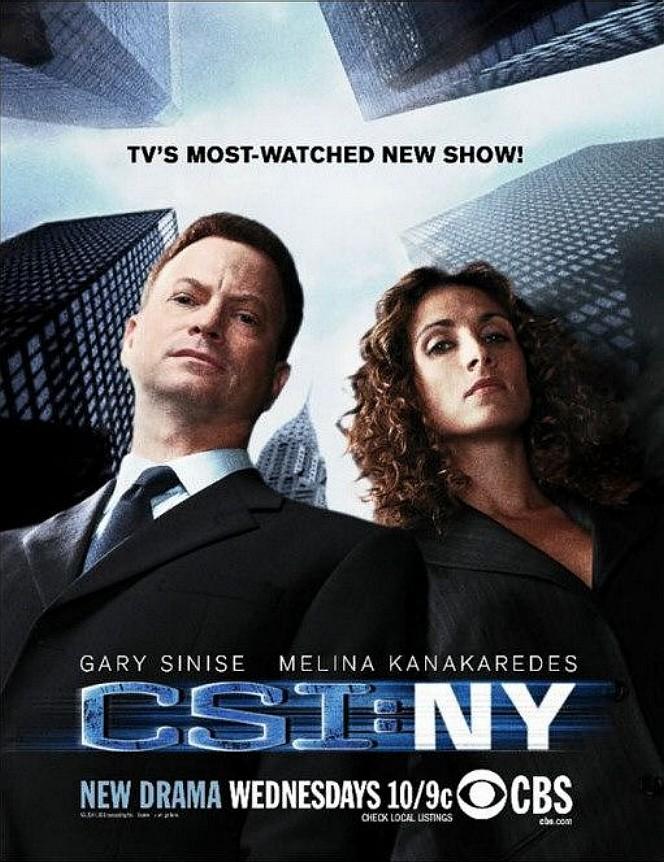 Watch Movie csi-ny-season-5