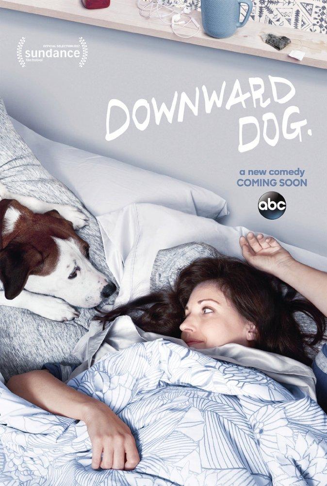 Watch Movie downward-dog-season-1