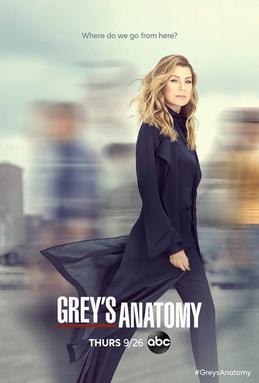 Watch Movie grey-s-anatomy-season-16