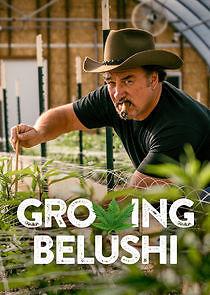 Watch Movie growing-belushi-season-1