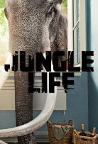 Watch Movie jungle-life-season-1