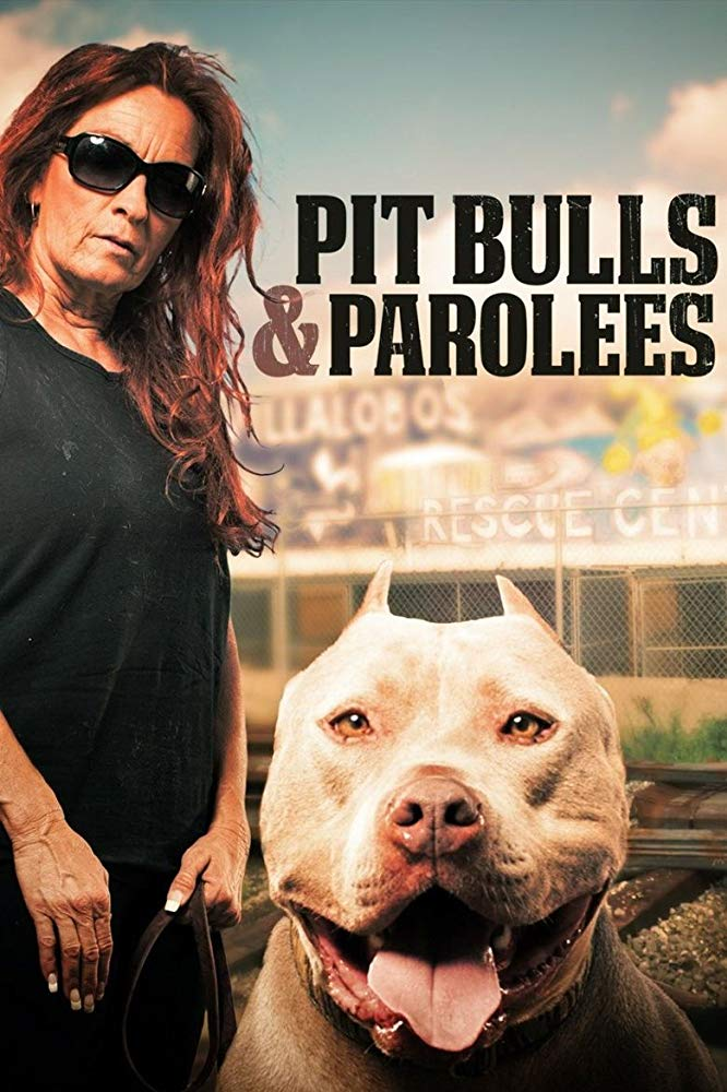 Pit Bulls and Parolees - Season 12