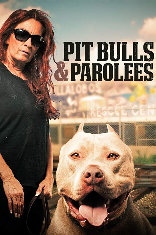 Pit Bulls and Parolees - Season 2