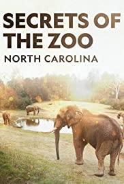 Watch Movie secrets-of-the-zoo-north-carolina-season-1
