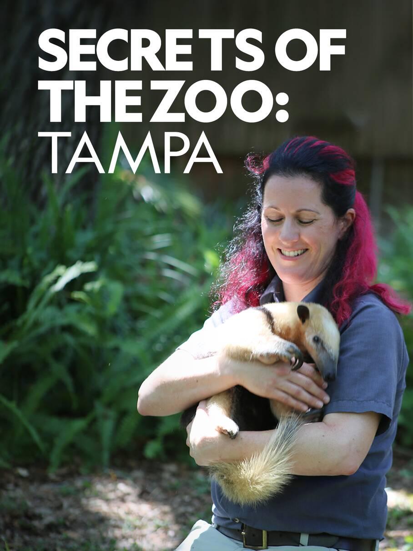 Watch Movie secrets-of-the-zoo-tampa-season-2