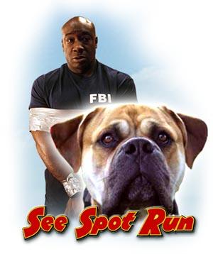 Watch Movie see-spot-run