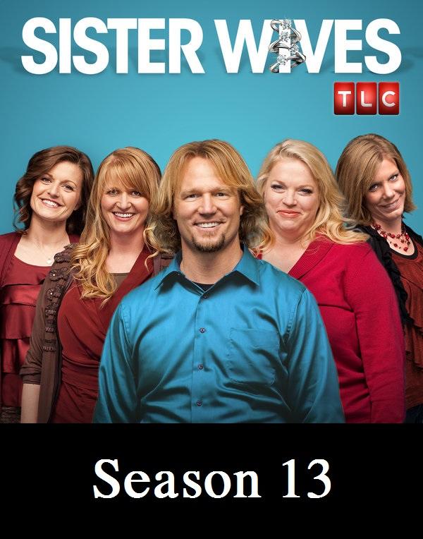 Watch Movie sister-wives-season-13