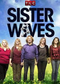 Sister Wives - Season 15