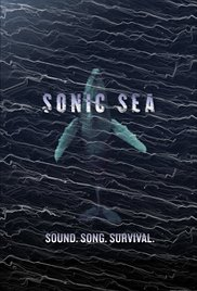 Watch Movie sonic-sea