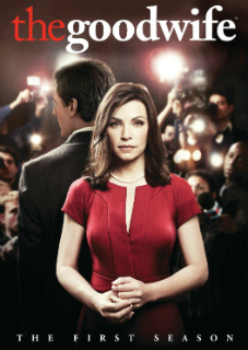 Watch Movie the-good-wife-season-1