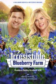 Watch Movie the-irresistible-blueberry-farm