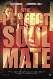 Watch Movie the-perfect-soulmate