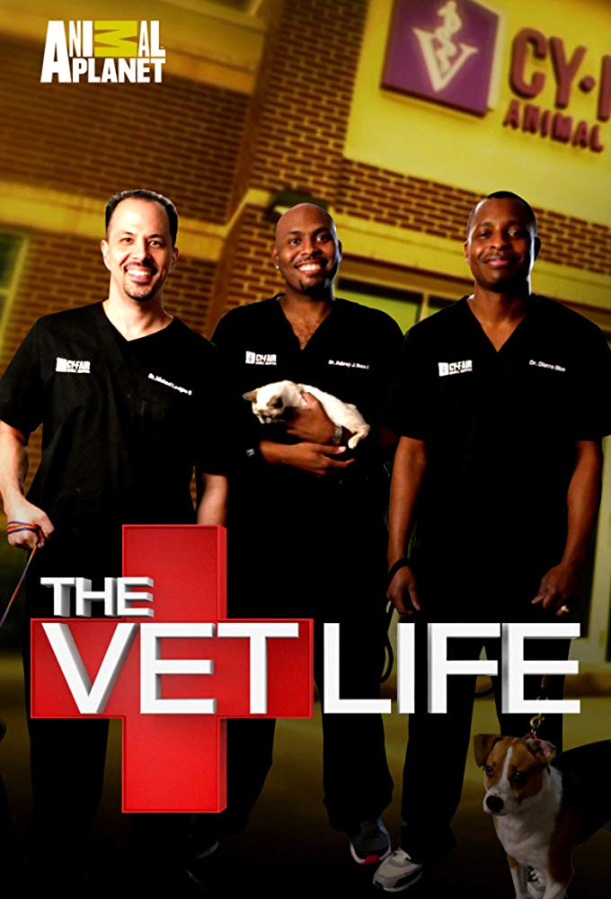 Watch Movie the-vet-life-season-5