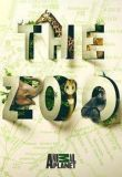 Watch Movie the-zoo-2017-season-2