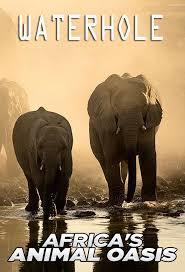 Waterhole: Africa's Animal Oasis - Season 1