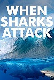 Watch Movie when-sharks-attack-season-4