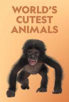 Watch Movie world-s-cutest-animals-season-1