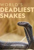 World's Deadliest Snakes - Season 1